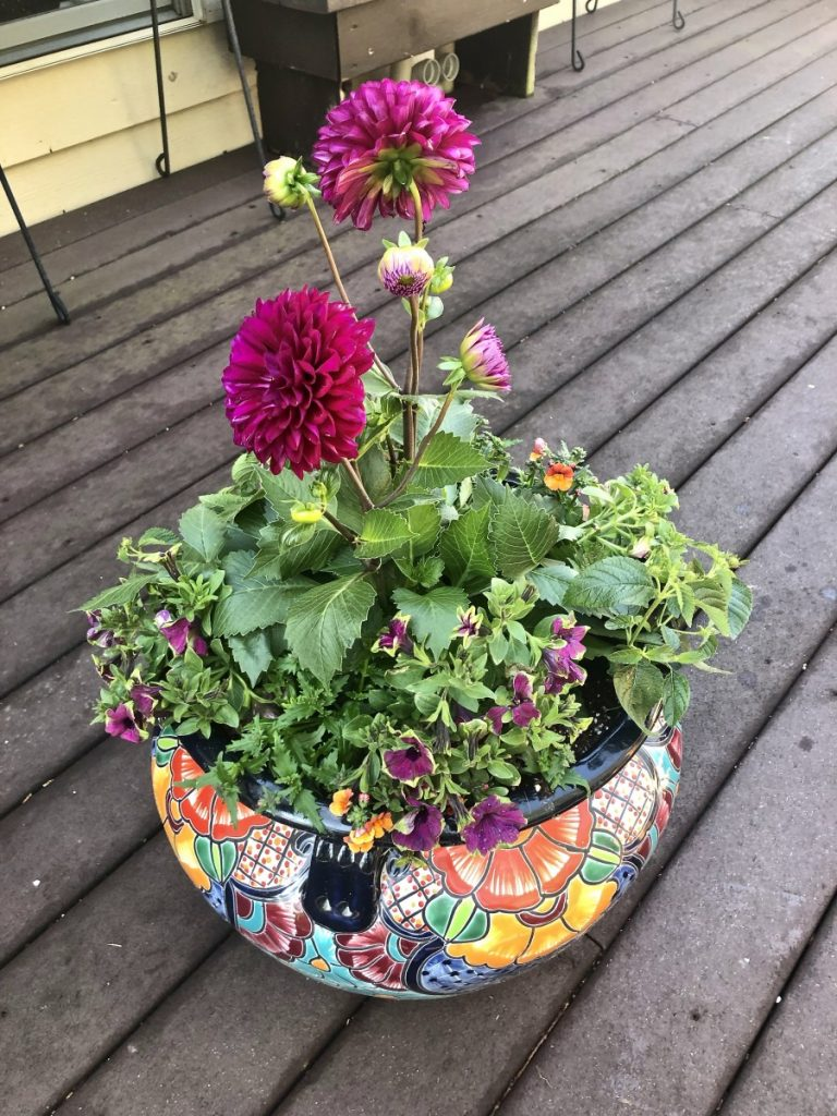 Colorful flowering planter featuring zinnias and wave petunias.