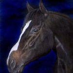 Alfred Nobel stallion Acrylic painting Kathrin Guenther web file
