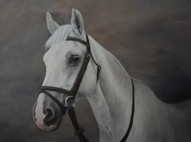 horse, pony, Kathrin Guenther, acrylic, art, painting