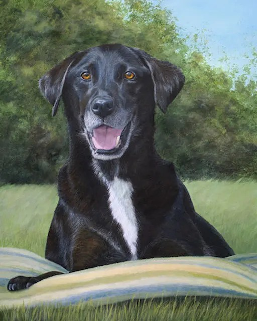pet dog painting Junior black Labrador Kathrin Guenther acrylic art