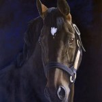 horse painting, stallion, Yeats, Kathrin Guenther