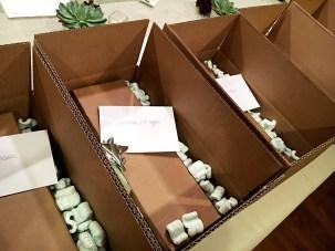 Packaging Bottles