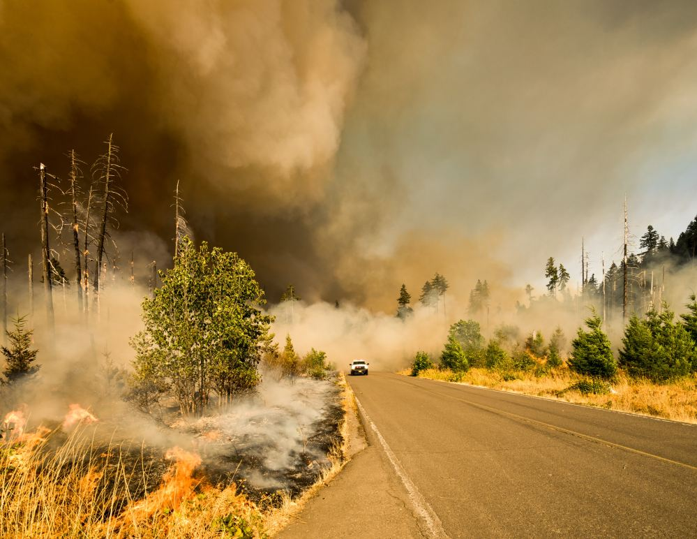 Photograph of car driving out of smoke from wildfire