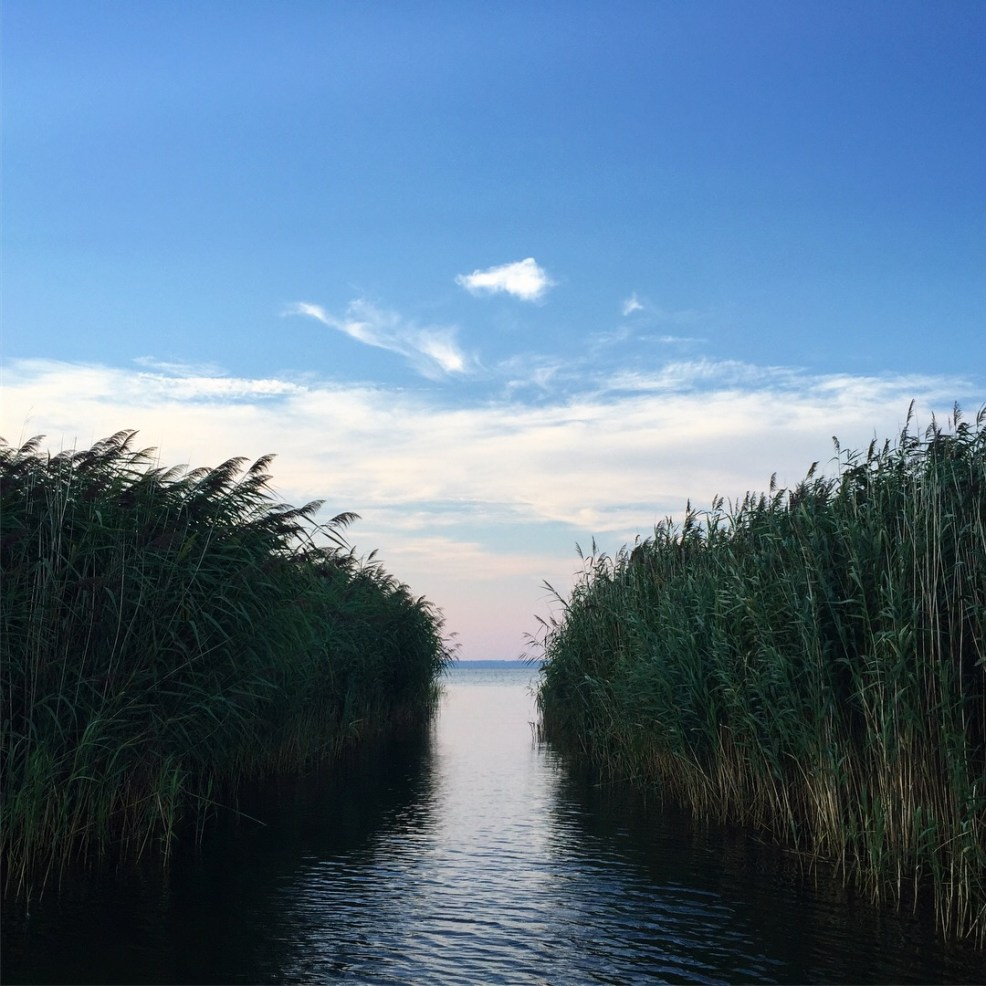 Long point sunset cruise wetlands
