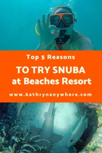 Top 5 Reasons to try SNUBA #diving #Scuba #dive #snorkeling #scubadive #SNUBA #snubalife #trysnuba #whyyoushouldtrysnuba #BeachesMoms #top5reasons #beachesturksandcaicos #underthesea #marinelife #littlemermaid