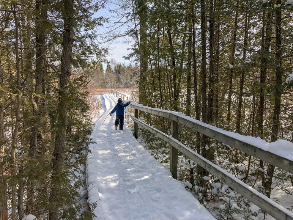 Little Man walking away, clearing snow off the railing on Old Shore Road Trail by visitor's centre MacGregor Point Provincial Park in February #findyourselfhere #macgregorpointprovincialpark #macgregorpoint #macgregorpp #ontarioparks #yurtcamping #wintercamping #outdoors #adventureparenting #portelgin #brucepeninsula