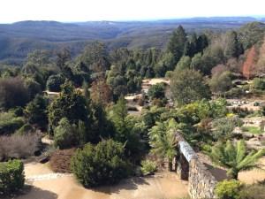 Mt Tomah Botanical Gardens