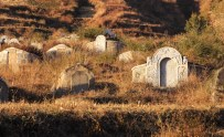 Tombs sit on the hillside in between the terraced fields.