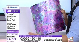 Create & Craft First Edition Papers Wild Flower
