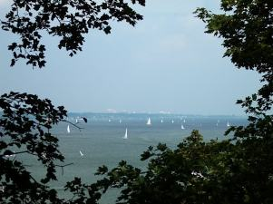 Bayfront sailboats