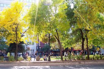 core park