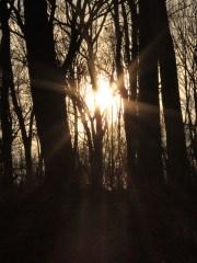 blog when christmas is hard look toward the light