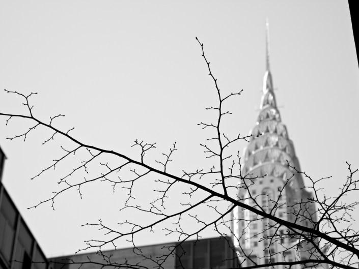 Chrysler Building, ew York Skyline, New York,Brooklyn Bridge, Brooklyn, New YorkCity, New York, NYC