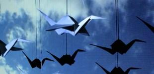 Dancing Cranes : 2010