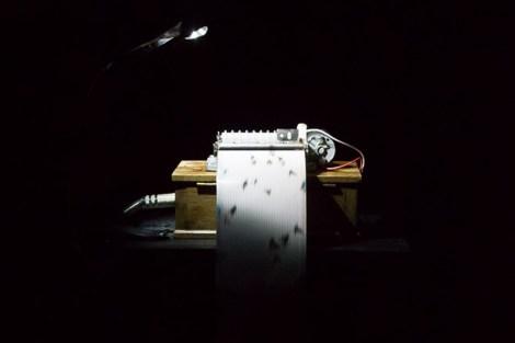 Music Box 12