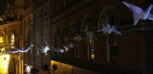 Luminous Birds premiere