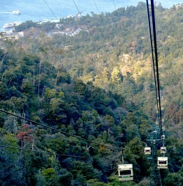 Cable cars to Mt Missen