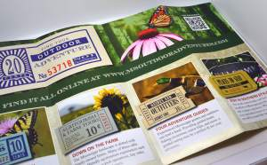 What to Include in a Brochure