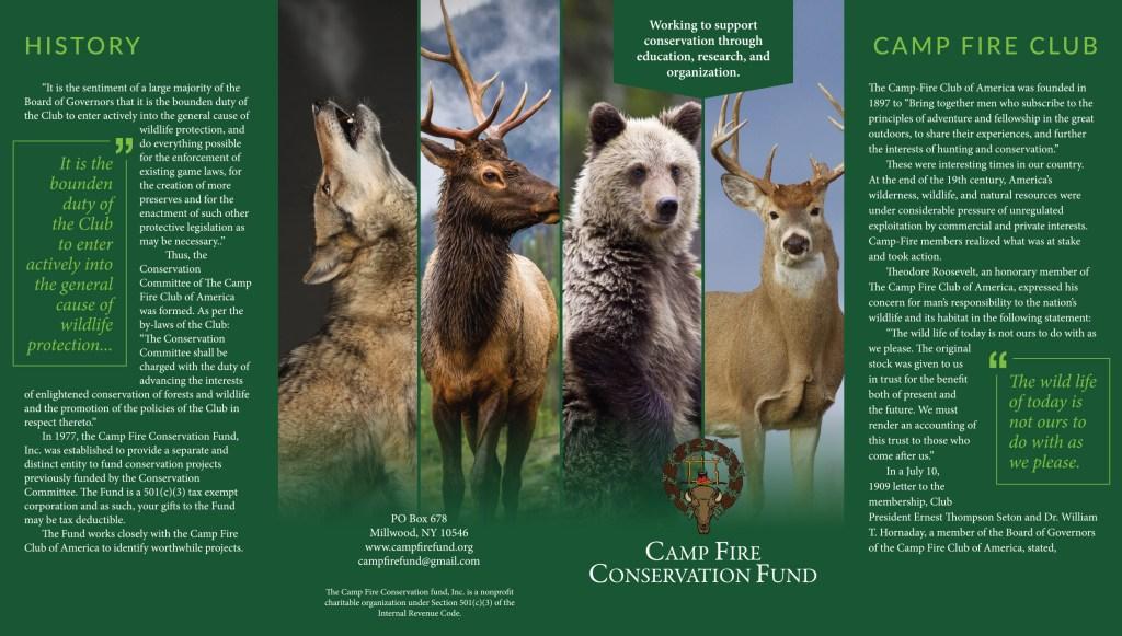 Camp Fire Fund Brochure