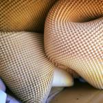 mattress guts harvested