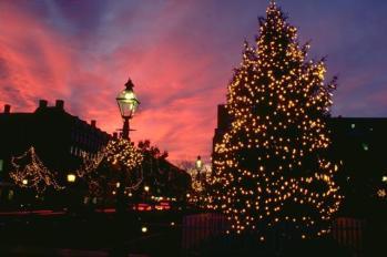 Holiday-Tree-Sunset