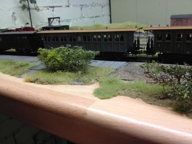 Model Scene Vegetation