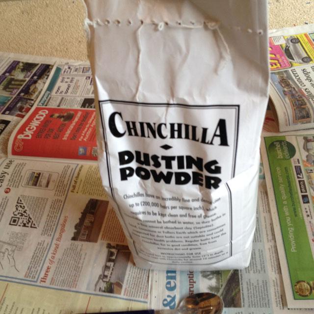 Chinchilla powder
