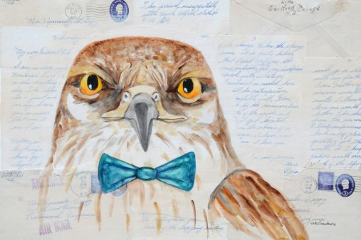 Hampton the Hawk