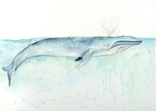 Whale Valentine