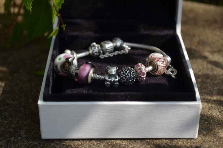 My Pandora Bracelet and Charms