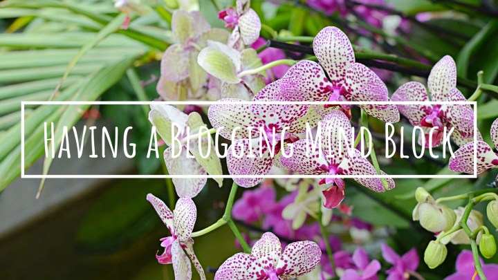 Having A Blogging Mind Block | Budget Blogging