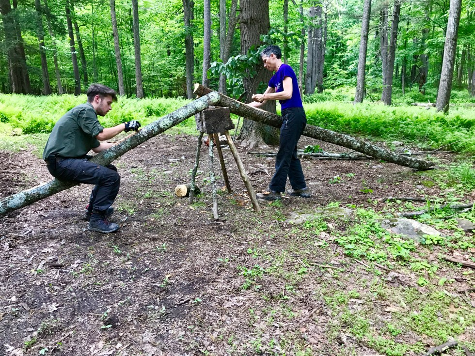 Removing the bark for me basswood tree with a drawknife