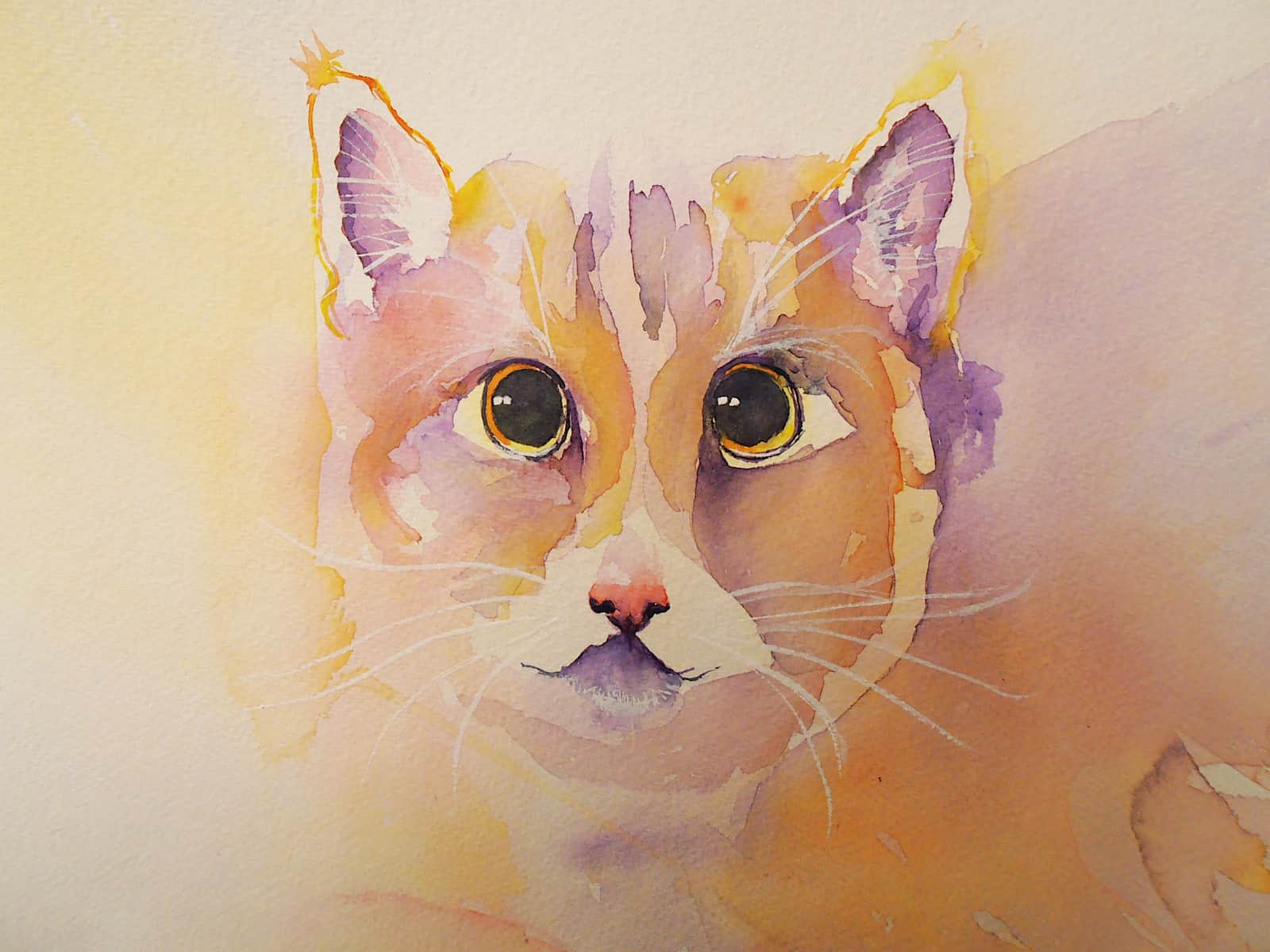 Watercolour ginger cat painting in orange , yellow, purple by Katie Lloyd