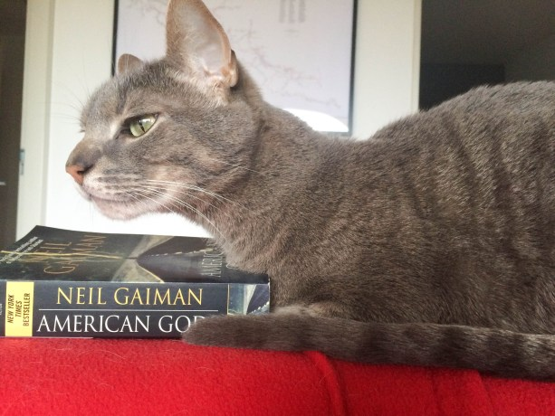Ollie is contemplating the themes in Neil Gaiman's book American Gods