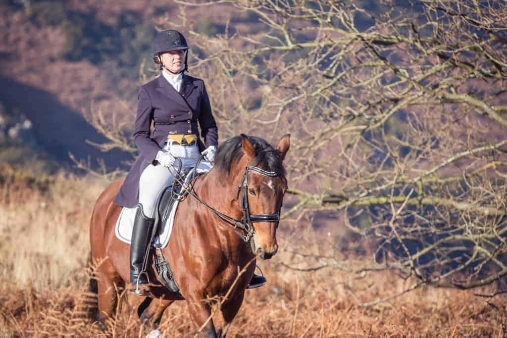 equine portrait photographer jersey wiltshire