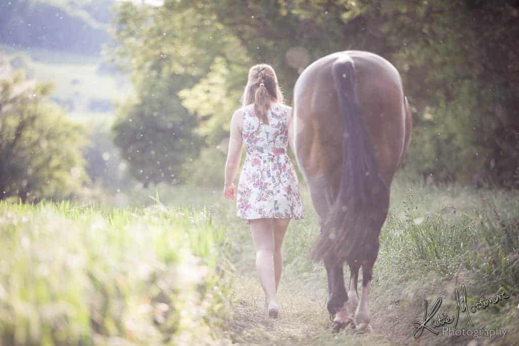 natural light equine photography wiltshire hampshire horse photographer