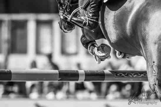 equine horse photographer wiltshire hampshire devon somerset london gct longines champions tour