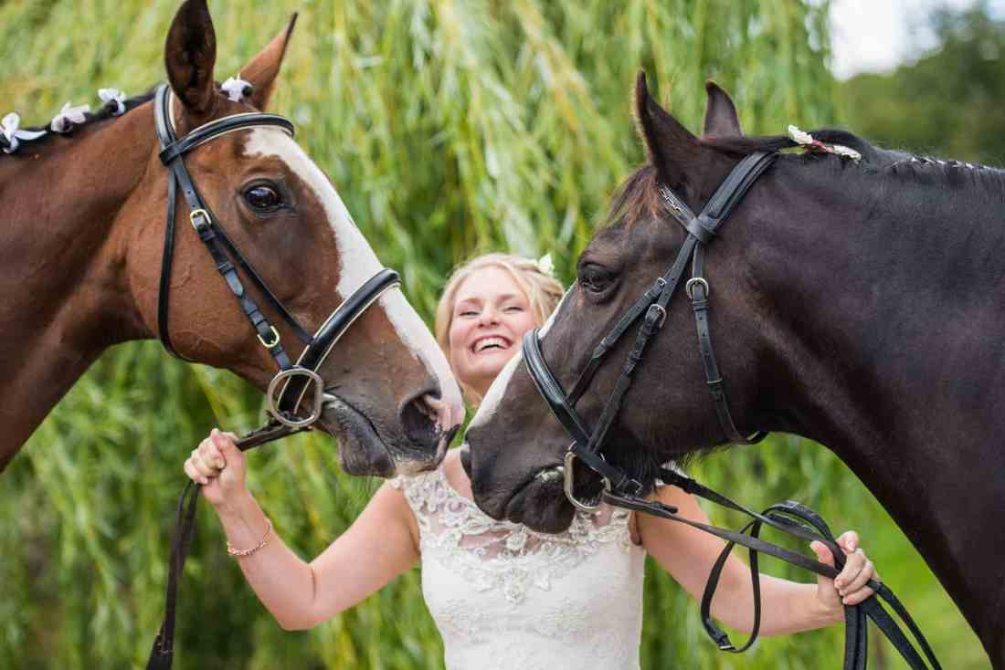 fullerton estate cottonworth hampshire wedding horse
