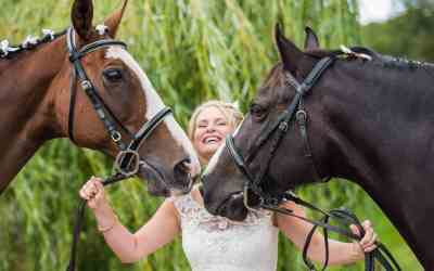 Your horse as a wedding guest – some helpful advice