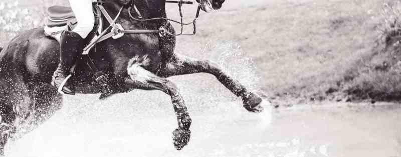 badminton horse trials cross country