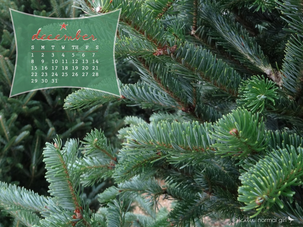 Nature Walk December Desktop And Printable Calendars Katie Normal Girl