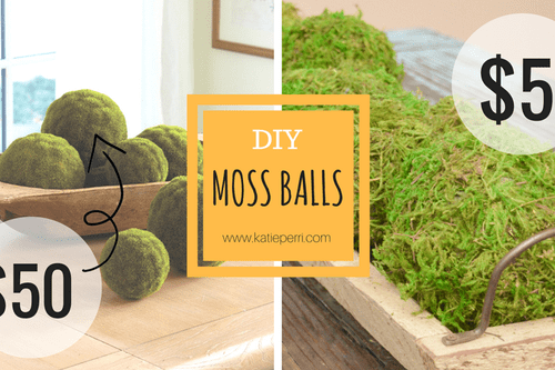 DIY: Bundle of Moss Balls for $5