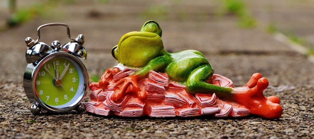 Alt Text: A photograph of a sculpted frog sleeping next to an alarm clock.