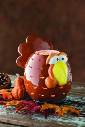 Silly Turkey!