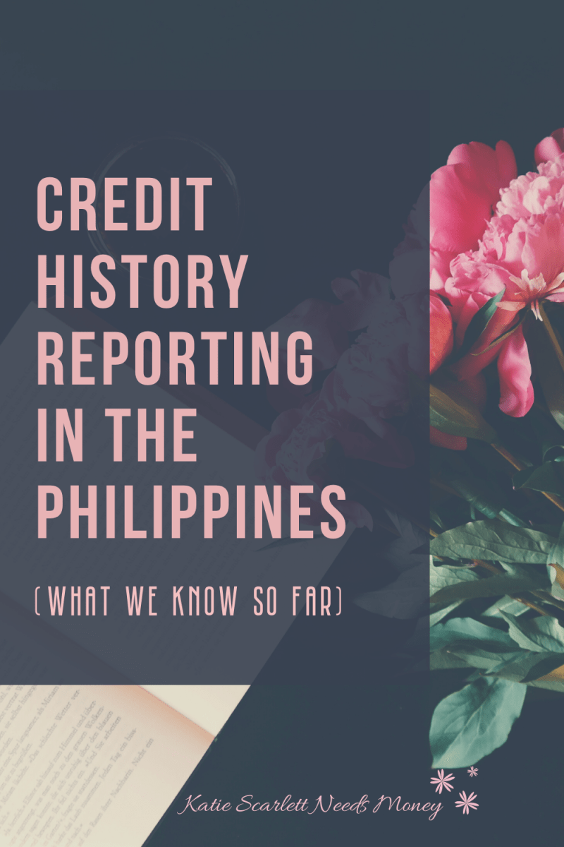 Credit History Reports - What We Know So Far