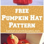 Free Crochet Pumpkin Hat Pattern