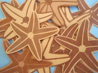 starfish galor!
