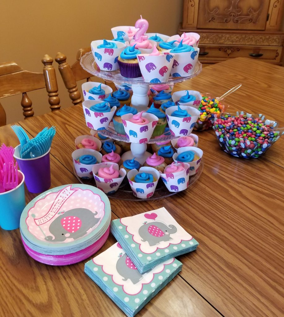 Girly Elephant Themed Birthday Party on a budget