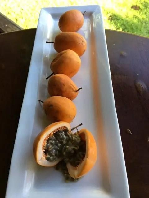 Yellow/Orange Jamacian Passionfruit