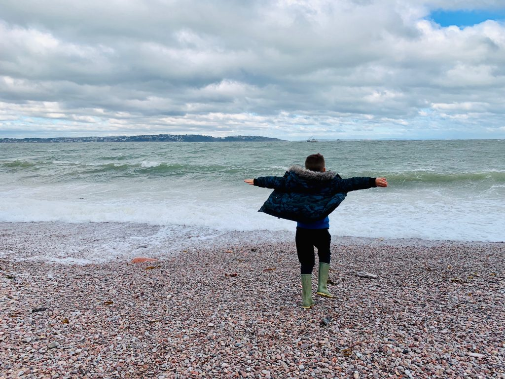 Harvey by the sea